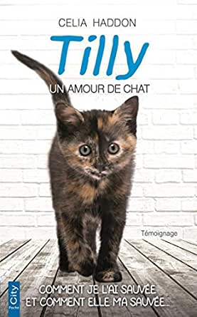 options de chat